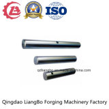 Il pezzo fucinato lungo dell'acciaio inossidabile dell'OEM/ha forgiato l'asta cilindrica