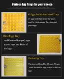 يحسن يثنّى قوة 36 بيضات مصغّرة بيضة محضن مفرخ آلة