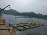 Quadratischer Fisch-Rahmen für Tilapia und Barsch