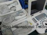 임신을%s 큰 승진 휴대용 B/W 초음파
