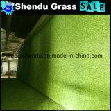 2X25m/Roll専門のエクスポートの品質の人工的な草