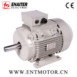Asynchroner hoher elektrischer Motor der Leistungsfähigkeits-IE2