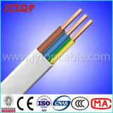 câble électrique plat de 450/750V 2.5mm TPS pour la norme d'AS/NZS
