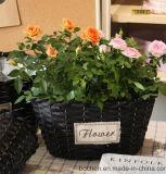 (BC-WF1015) Cestino naturale Handmade puro del fiore del salice