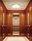 개인적인 호화스러운 경험 홈 엘리베이터