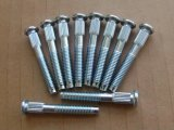 High Strenth Steel Knurled Screw, Customized, High Class 8.8-12.9