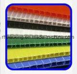 Environmently/plastique ondulé coloré de pp couvre Correx Coroplast Corflute pour la protection