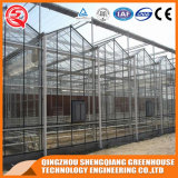 Serre chaude en aluminium de feuille de polycarbonate de profil d'acier inoxydable de Multi-Envergure pour la fleur
