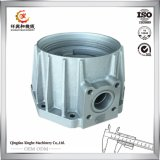 La fundición de aluminio de inversión de la precisión del acero inoxidable/del hierro muere el bastidor de arena