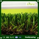 منظر طبيعيّ عشب اصطناعيّة لأنّ حديقة