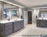 Lusso di stile dell'America con il comitato dell'agitatore per la vanità della stanza da bagno di progetto