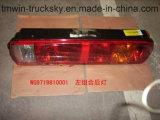 Lampada di combinazione della lampada posteriore dei pezzi di ricambio di Sinotruck HOWO Wg9719810001