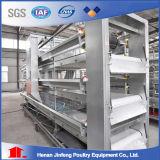 H datilografa o produto do sistema Jinfeng da gaiola da galinha