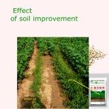 Meerespflanze-Bioboden-Änderungs-Boden-Signalformer