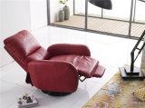 Meubles en cuir de sofa de l'Italie de loisirs (737)