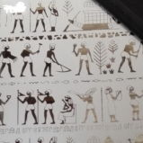 중국 공급자 이집트 에칭 스테인리스 무료 샘플