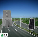 Réverbère solaire de l'approvisionnement 6W-80W DEL d'usine de la Chine au meilleur prix