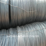 Fabrik Price High Tensile Low Carbon Iron Wire SAE 1008b 5.5mm