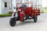 Um triciclo da carga do carregamento da tonelada com CEE