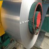 ضجيج [إن] برد - يلفّ [كربون ستيل] فولاذ شريط ملالي