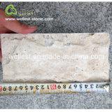 Revêtement beige normal en gros de mur en pierre de champignon de couche de travertin