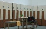 Gabinete fenólico del laminado del acuerdo de la alta calidad para Gym&Fitnessroom
