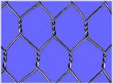 Maglia di Gabion della rete metallica/casella esagonali di Gabion