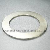 Magnete magnetico di forte potere permanente di figura di Shk005-Customized