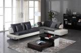 Sofá da tela da sala de visitas da mobília da HOME do projeto moderno ajustado (HC8109)