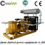 самый лучший генератор энергии 50Hz/60Hz природного газа качества 40kw