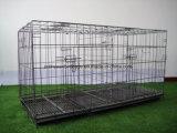 Псарни собаки загородки утюга высокого качества клетка собаки дешевой складывая