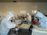 HACCP Brc Certifacte Tsingtao 식물성 동결된 Cookin에 있는 40g/Piece 봄 Rolls