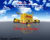 Spedizioniere di trasporto certo dalla Cina ad Europa