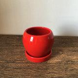 Pequeño plantador de cerámica rojo para la flor