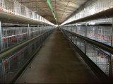Camp de couche de grilleur d'usine/système automatique disponible