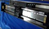 Micro C.A. Linear Motor com Ni Plating (SWL-PMI10C)