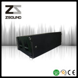 Riga sistema acustico del PRO audio doppio 12 di Zsound '' di schiera
