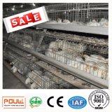 China-Lieferant 3 Schichten Galvano galvanisierte Brathühnchen-Rahmen-mit großem Preis