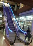 30degee 또는 35degree Aluminum Steel Step Indoor Escalator