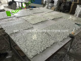 Blatt-Form-Mosaik-Fliese-Carrara-Mischung Thassos weißes Marmormosaik