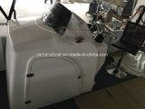 20FT de Boot van het Ponton van de Catamaran van het aluminium met Motor