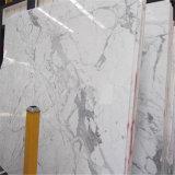 Marmo bianco italiano di bianco di Calacatta delle mattonelle dei controsoffitti