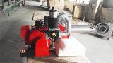 蒸気ボイラか他の熱エネルギー装置で使用されるガス・バーナー