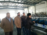 Fábrica verdadera completamente automática de la maquinaria de la red del techo T de China