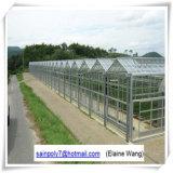 いちごのためのMultispanのHydroponicガラス温室