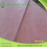 Poplar와 Hardwood Core를 가진 Bbcc Grade 12mm Bintangor Plywood