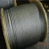 (DIN ; LES BS ; Corde de fil d'acier du mil) 7X19 Galvnized