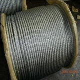 7X19 Ungalvanized/fune metallica acciaio inossidabile galvanizzato/