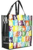 上塗を施してあるショッピング・バッグかハンドバッグまたは新しいStylyのポータブル袋