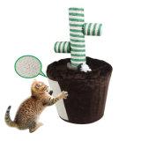 Albero di Scratcher del gatto, giocattolo del gatto (YS72176)